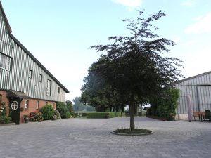 landhaus-humanitas-54